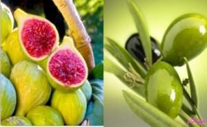 ارزش و خاصیت غذایی-انجیر-زیتون-خواص-میوه