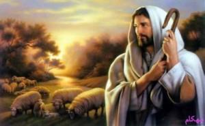 عکس حضرت موسی (ع) و تربت کربلا