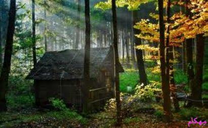 مهکام - معمای گم شدن در جنگل و کلبه جنگلی