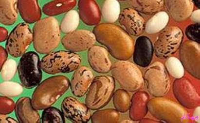 مهکام-طب سنتی فواید و خواص لوبیا سفید و قرمز