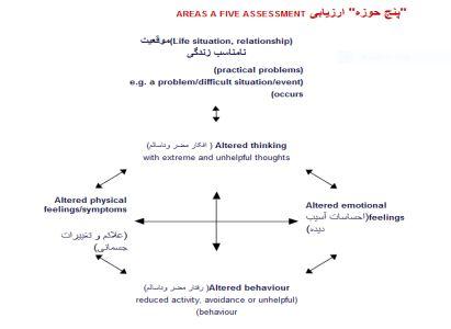 پنج حوزه ارزیابی درمان شناختی رفتاری