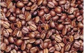 تست هوش تصویری 4 – یک صورت در میان دانه های قهوه