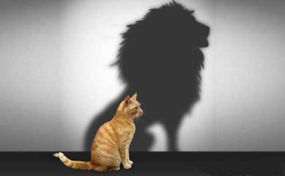 شخصیت خودشیفته | دکتر فرهنگ هلاکویی