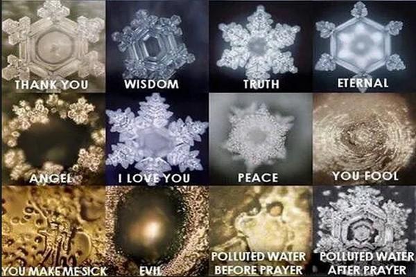 شعور آب یا معجزه آب – شاهین فرهنگ | دانلود، تصویر