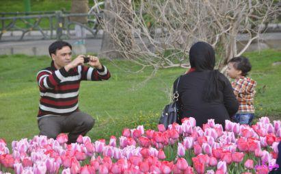 بررسی خانواده شاد ایرانی ما -قسمت دوم