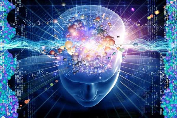 چگونه مغز یاد می گیرد و فراموش نمیکند؟